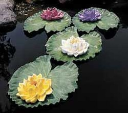 CobraCo: Floating Water Lily (White)