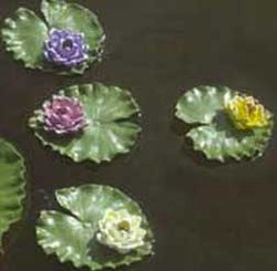 CobraCo: Mini Water Lily w/Pad Combo (Yellow)